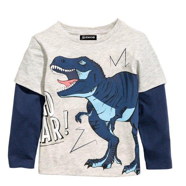 Great dinosaur top